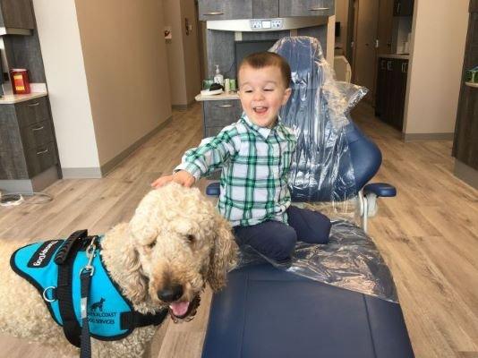 Dental Care for Nervous Children